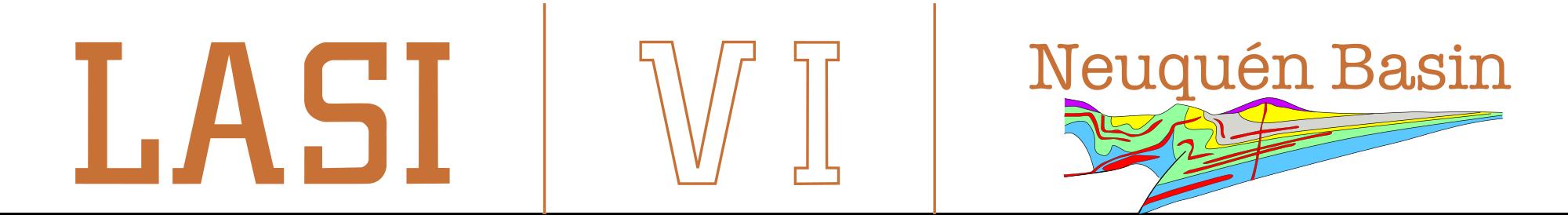 LASI VI Logo